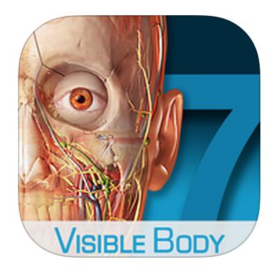 解剖学アプリ「Visible Body」を使った解剖学勉強法