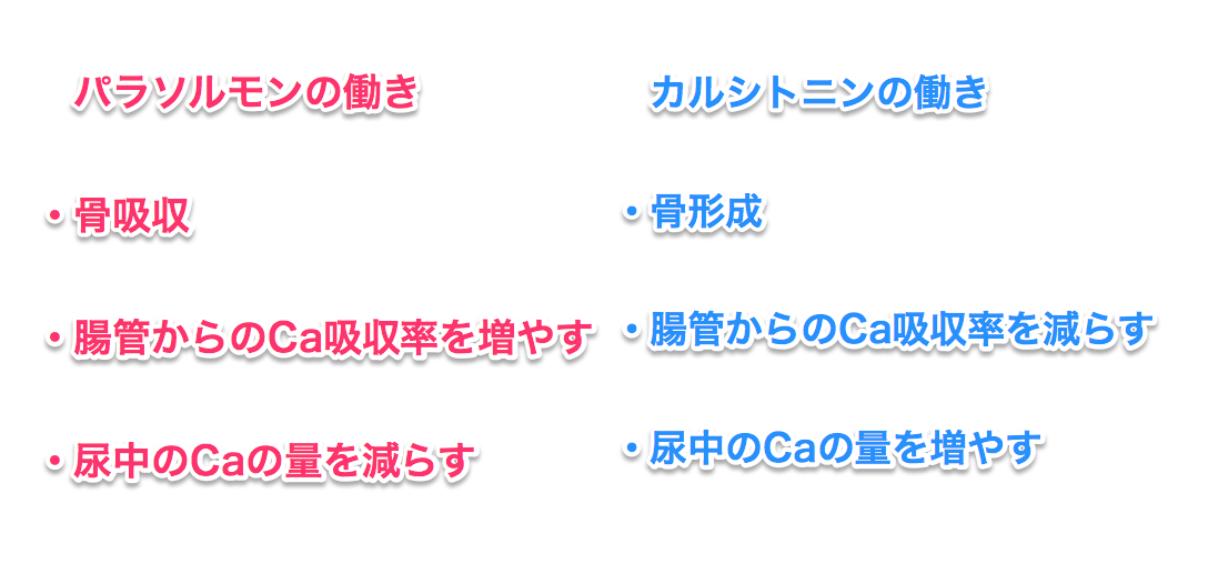 スクリーンショット 2015-09-03 13.25.36