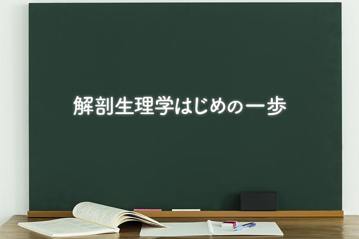 解剖生理学勉強法 〜はじめの一歩〜